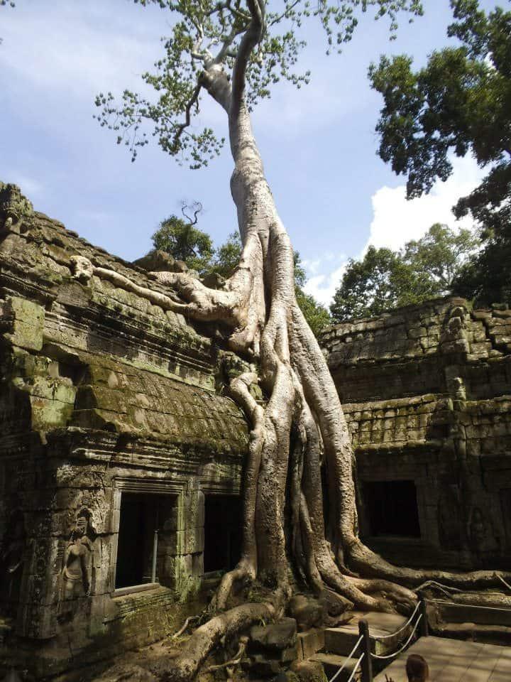 Travel Photo Tuesday Ta Phom