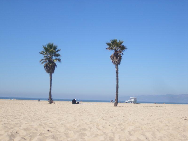 Roadtrip USA Venice Beach