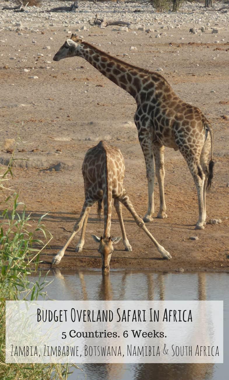 Overland Budget African Safari