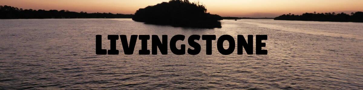 Livingstone Link Tile