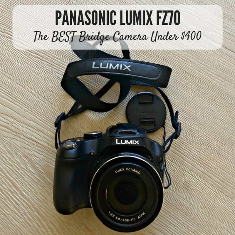 Panasonic Lumix FZ70 Review- The Best Bridge Camera For Travel Under $400
