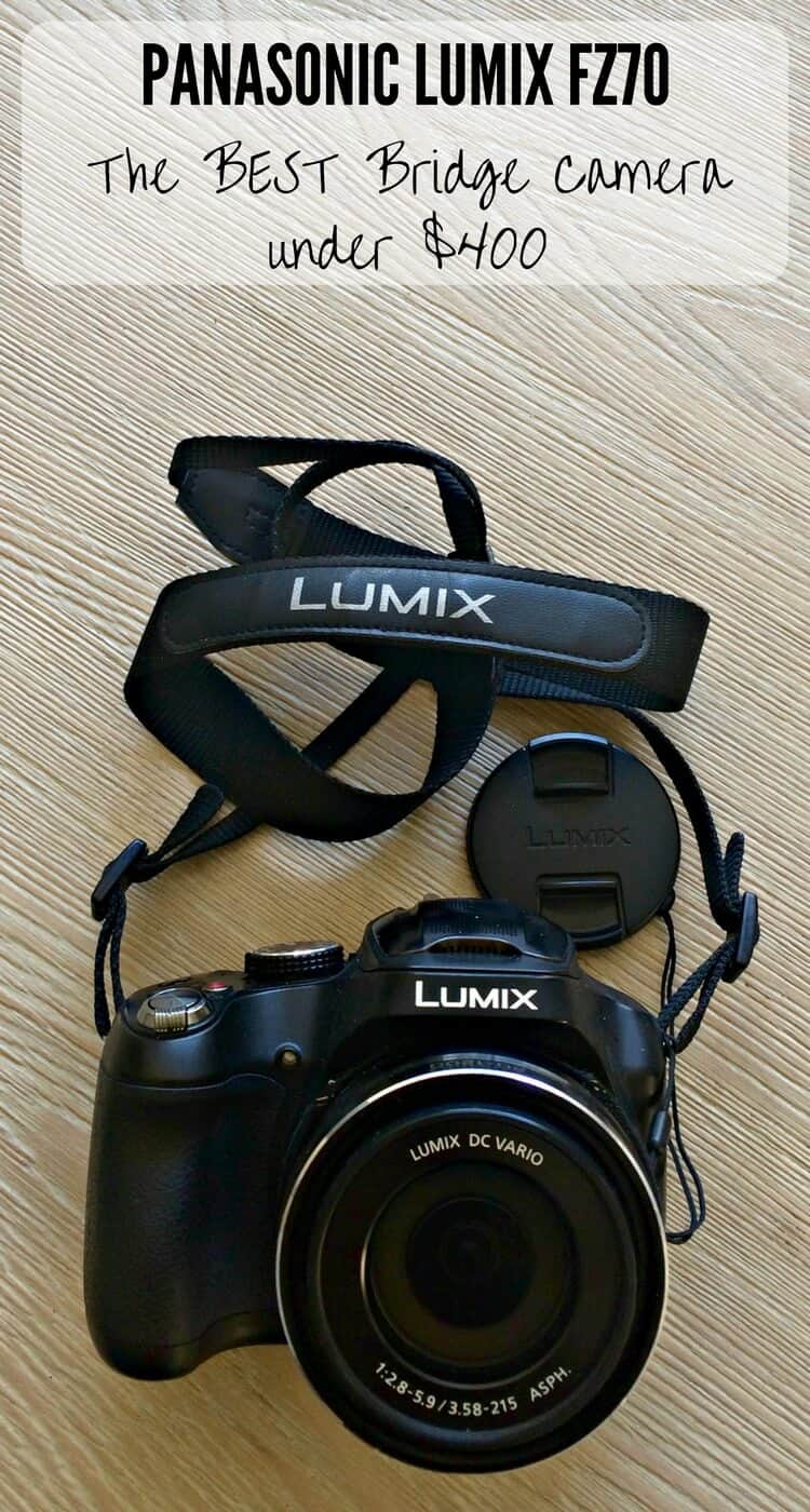 Panasonic Lumix FZ70 - The Best Bridge Camera For Travel Under $400