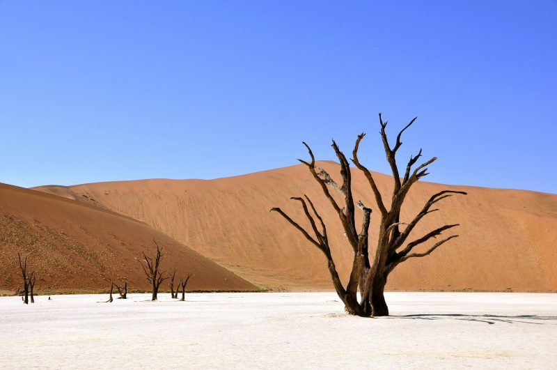 10 reasons visit Namibia 15 stunning photographs