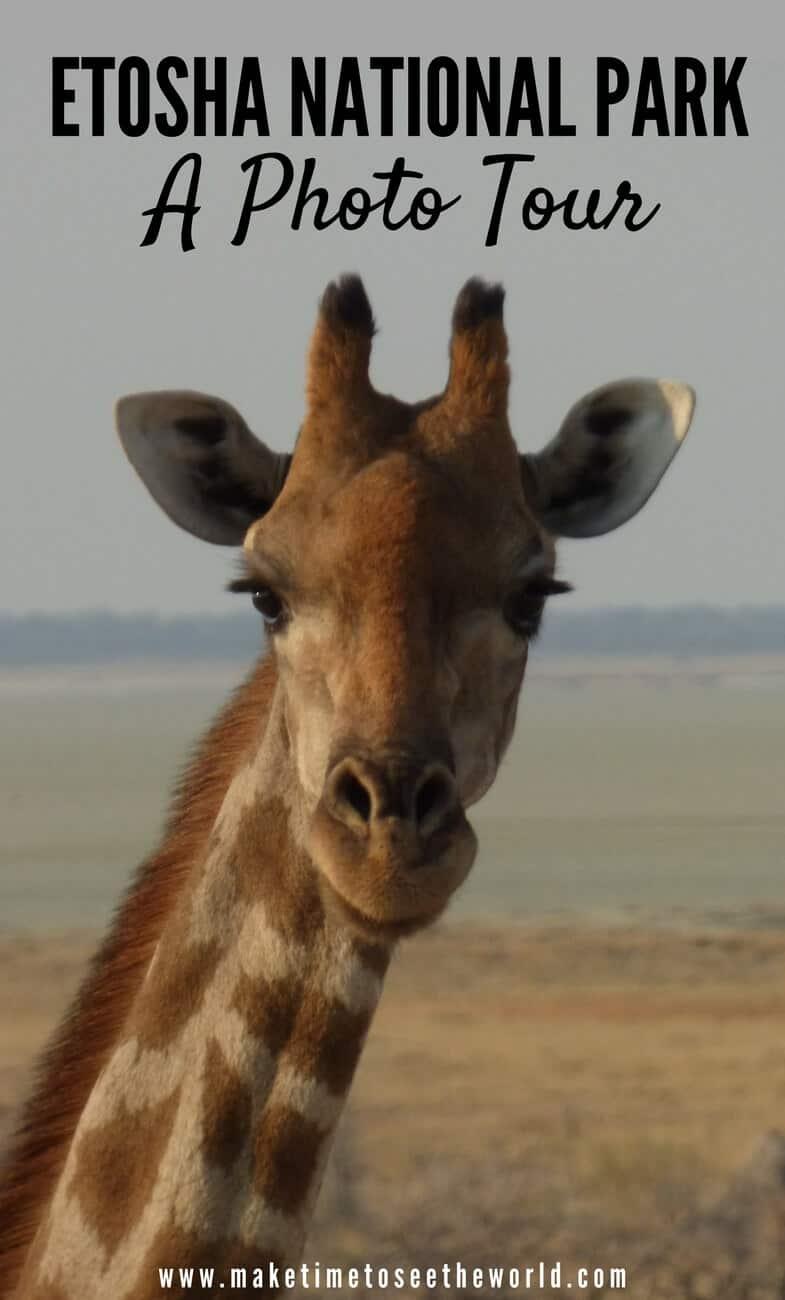 Etosha National Park Namibia Photo Tour