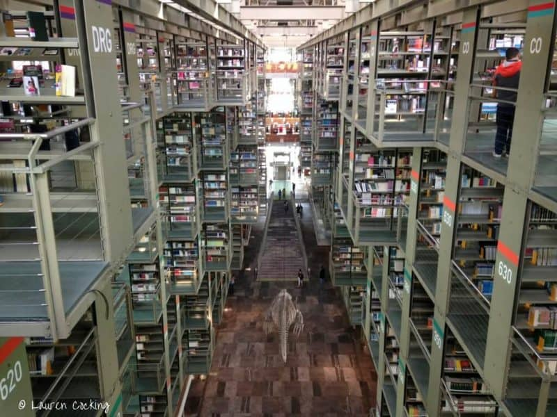 Plcaes to see in Mexico City - the library