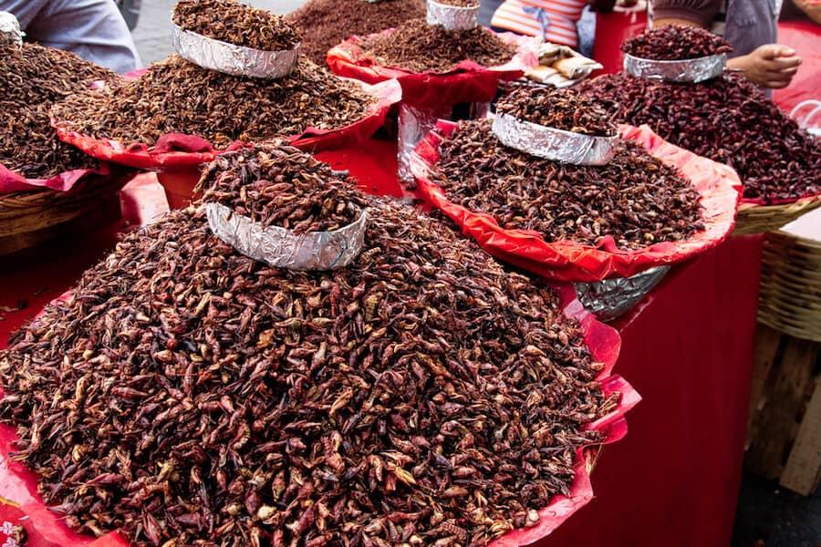 Oaxaca Markets