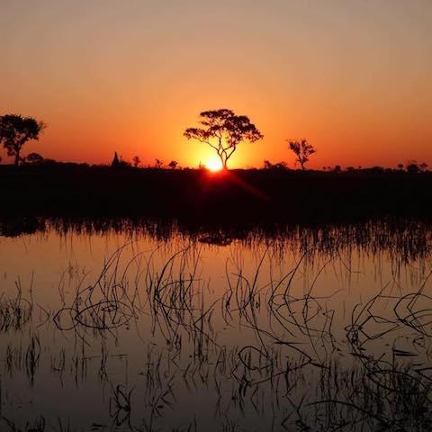 OKAVANGO SUNSET - Sunset in the Okavango Delta, Botswana - August 2016