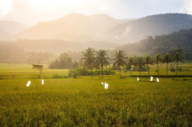 Mount Sesean Tana Toraja