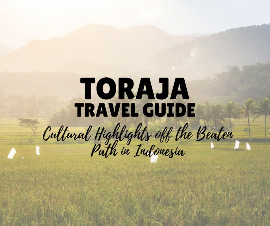 THINGS TO DO IN TORAJA cultural highlights