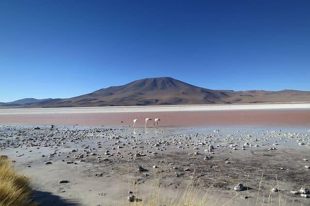 Bolivia atacama desert