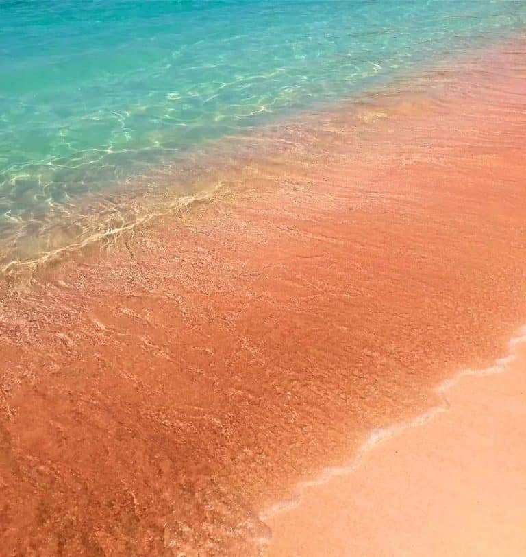 Pink Beach - Komodo National Park