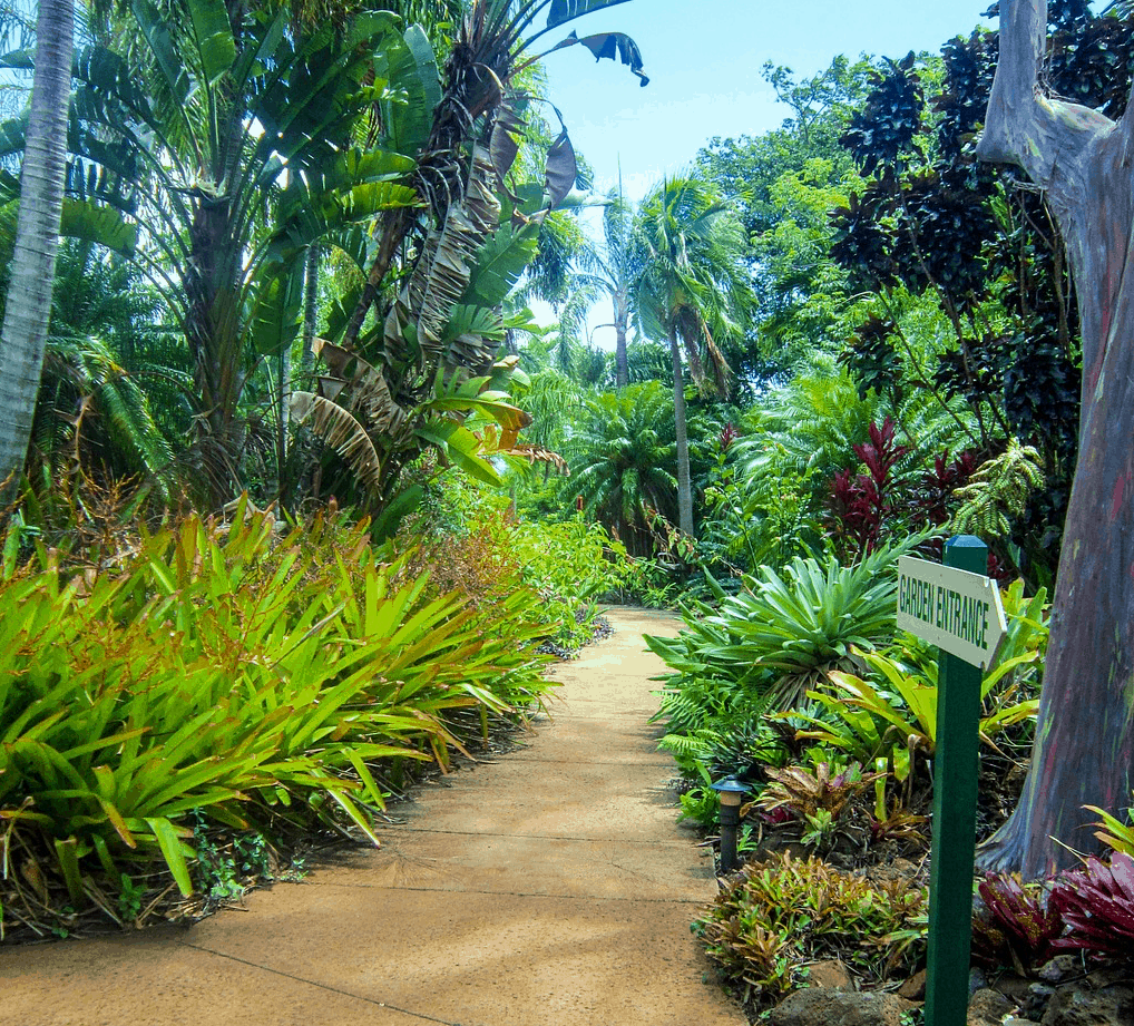 Hawaii Points of interest - the Tropical Botanical Garden Hawaii