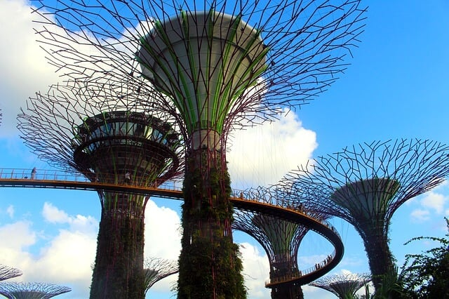 Singapore City Tour from Changi Airport