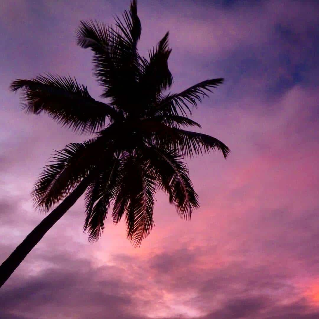 Pink Hour on Christmas Island