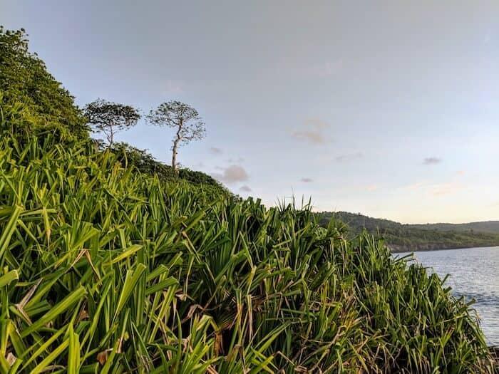 Epic landscapres on Christmas Island