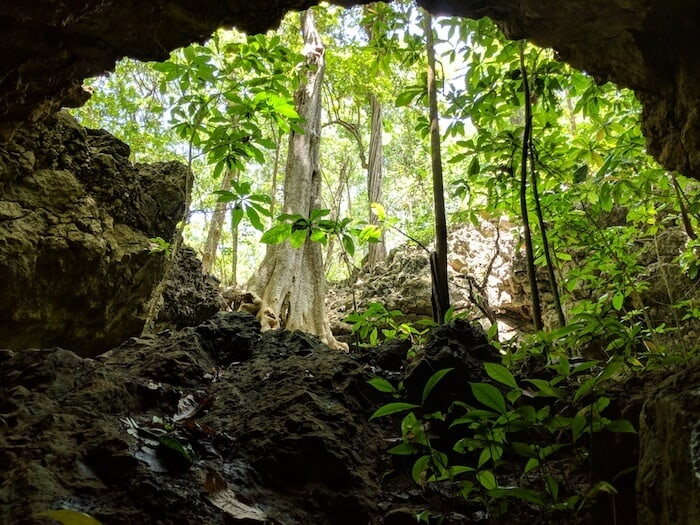 Freshwater Cave on Christmas island