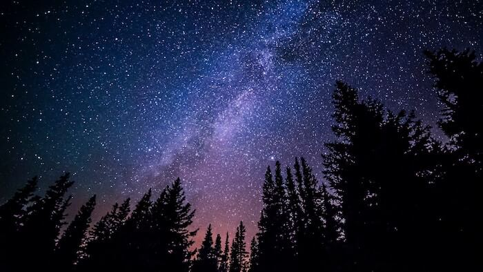 Milky Way with Trees in Shaddow in the foreground