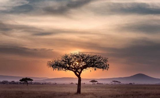 African Adventures for your Africa Bucket List