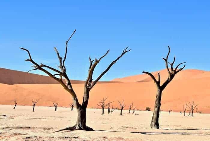 Sousselvlei - Deadvlei Namibia