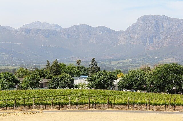 Stellenbosch, Wine Country Cape Town