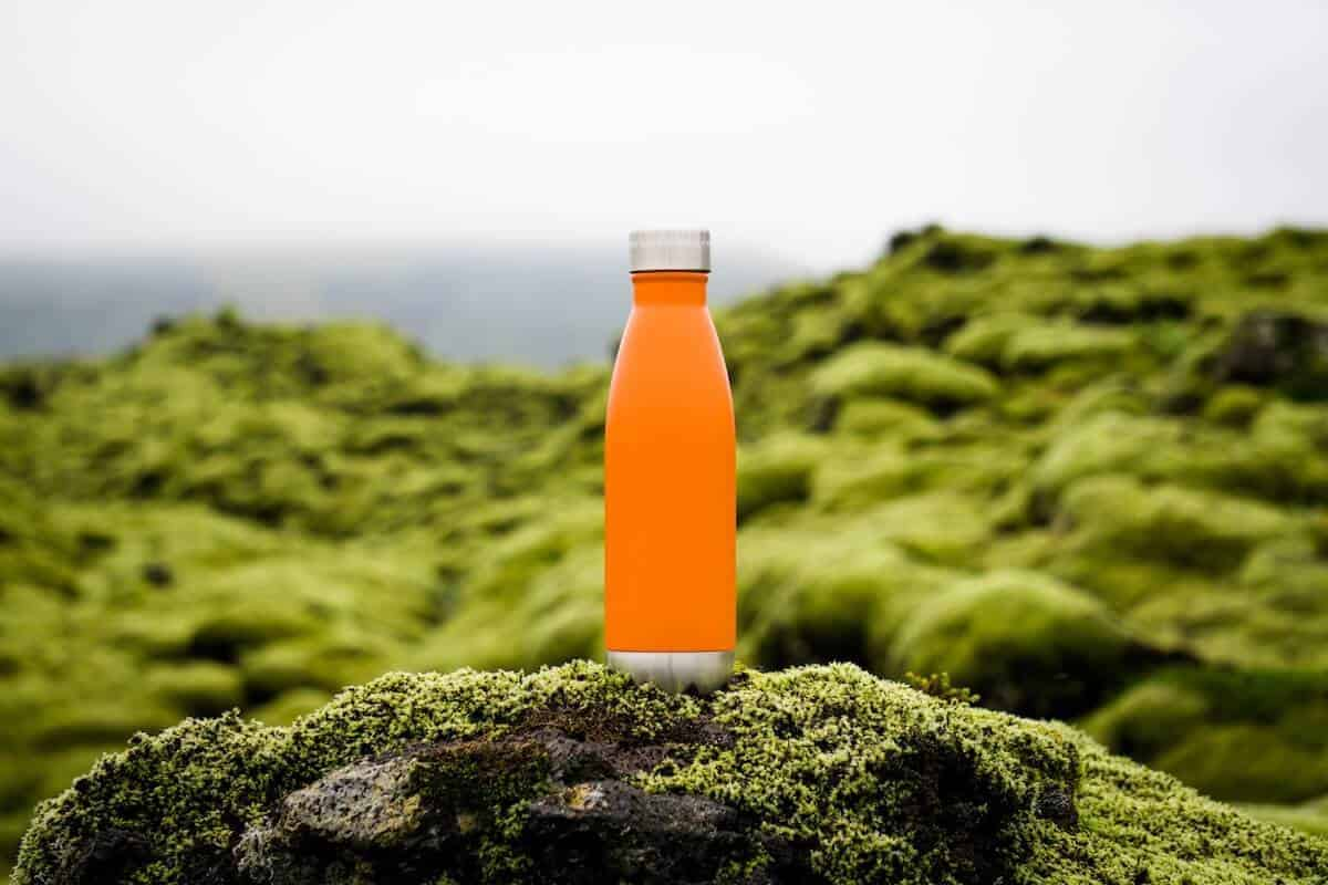 The Best Travel Water Bottles