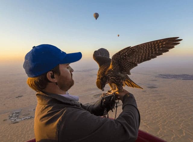 Dubai Hot Air Balloon Falconry