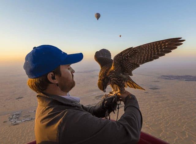 Dubai Hot Air Balloon Falconry