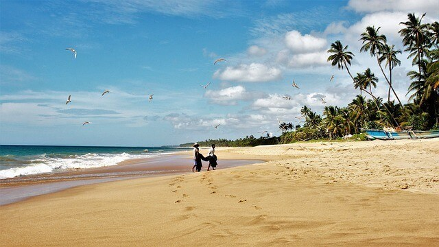 Negombo Beach - large stretch of golden sand with palm trees along the right edge of the frame and two fisherman carrying their catch in the distance in the centre of the frame with footprints in the sand leading to where they stand