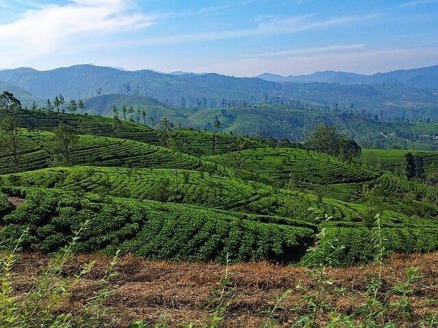Sri Lanka Central Highlands