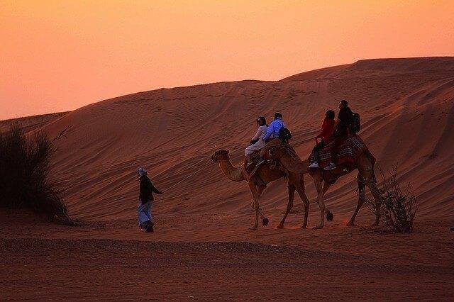 Sunset Camel Safari Dubai