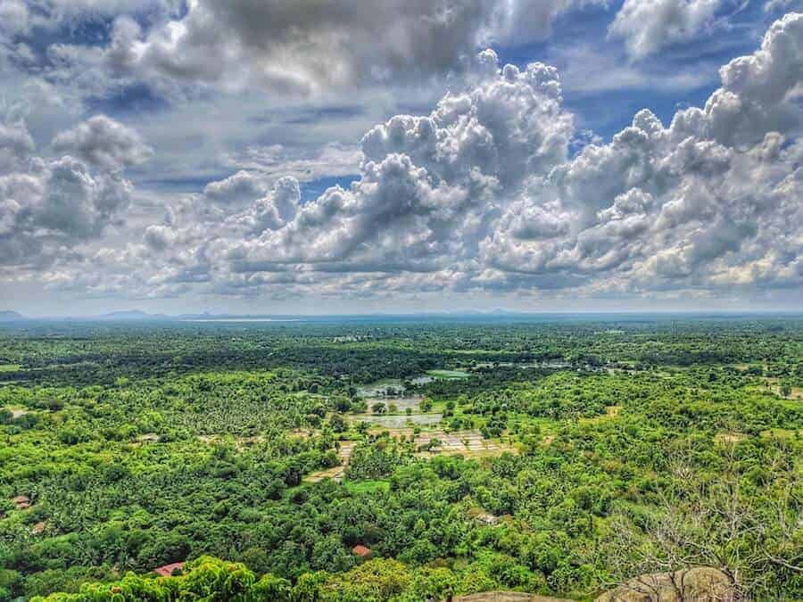 View from top of Yapahuwa