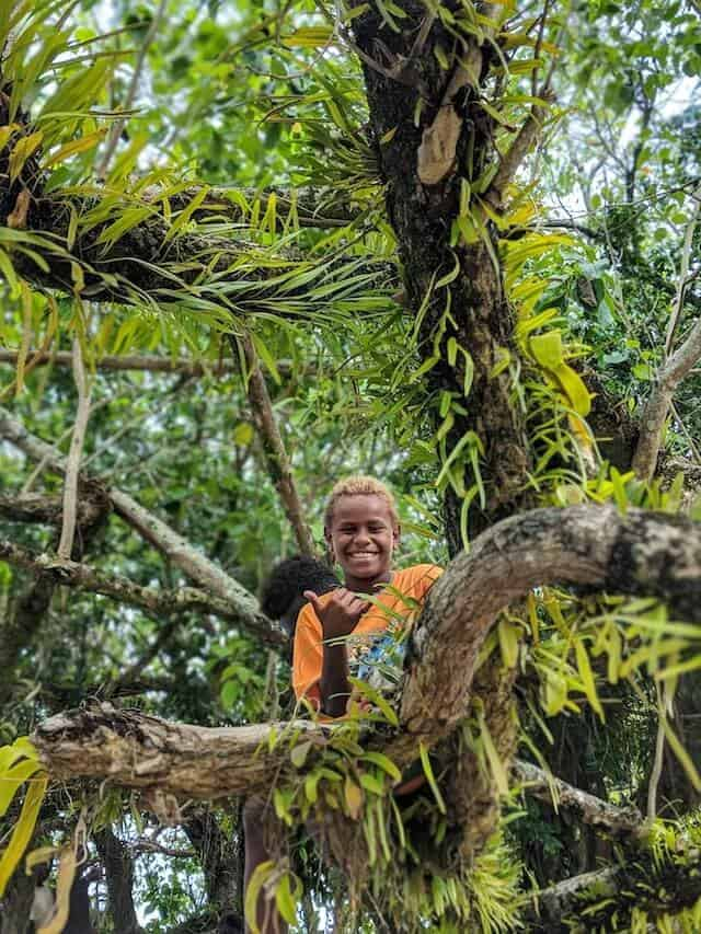 Boy in a tree in the Solomon Islands