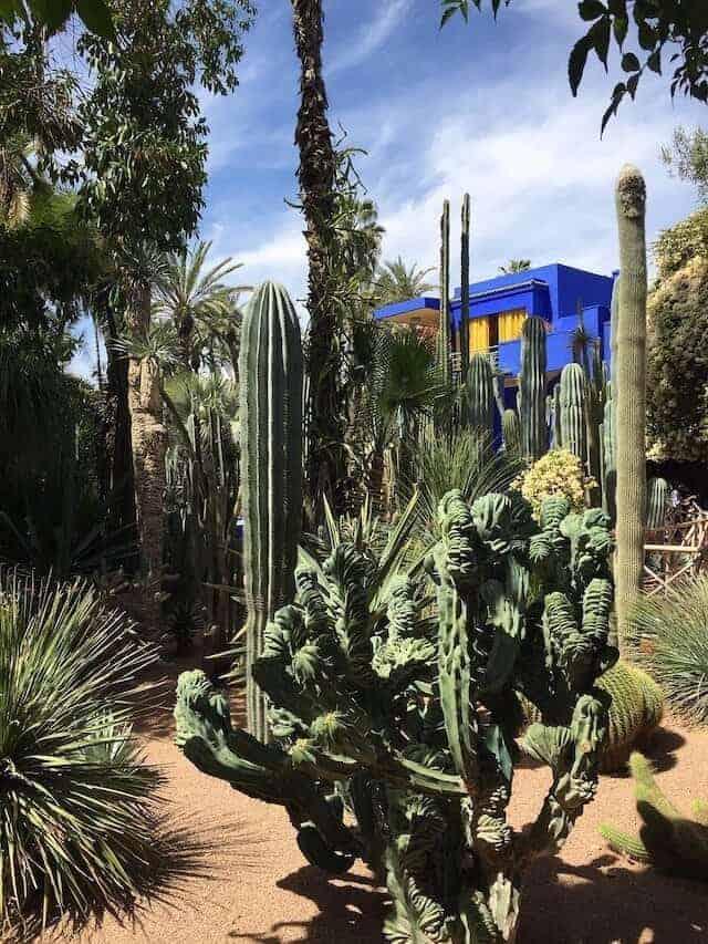 Gardens Marjoelle in Marrakesh