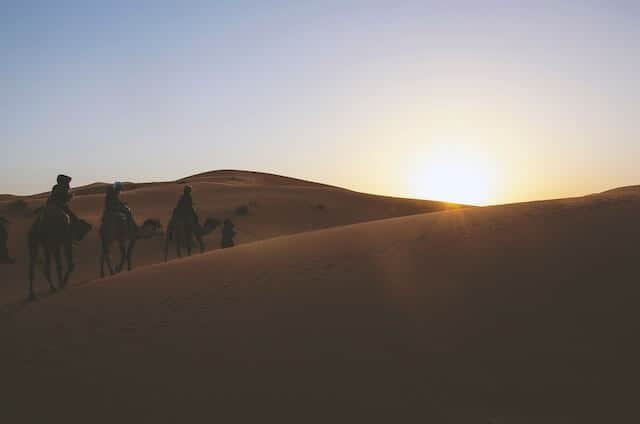 Sunset Camel Ride in Marrakesh