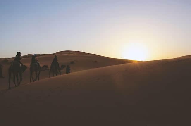 Sunset Camel Ride in Marrakesh