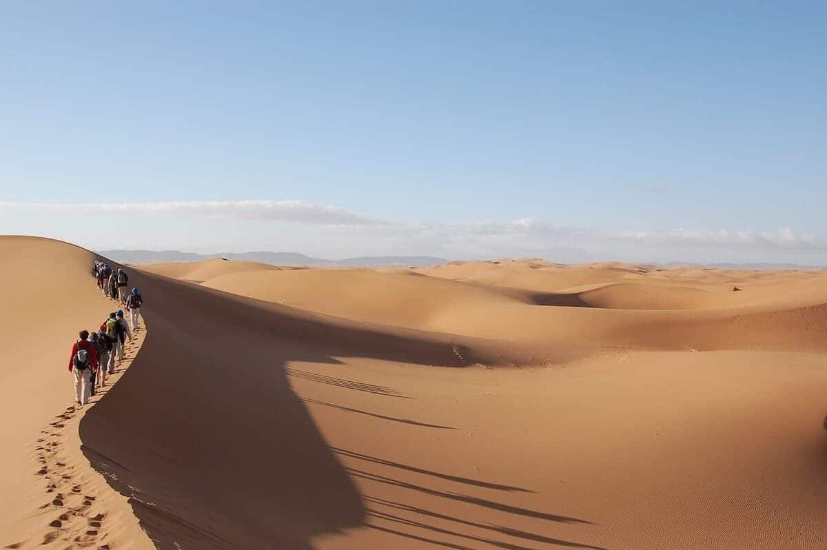 The Best Day Trips from Marrakesh and the best tours in Marrakesh