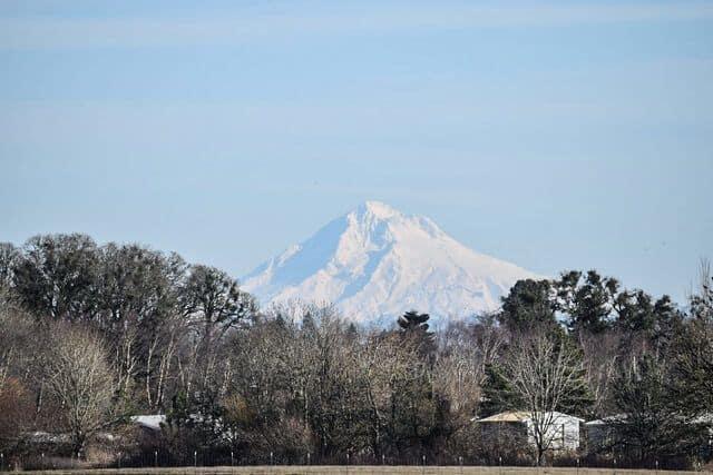 Mt Hood in Portland