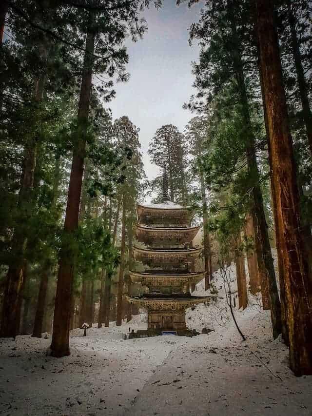 Mount Haguro 5 Pillar pagoda in the forest