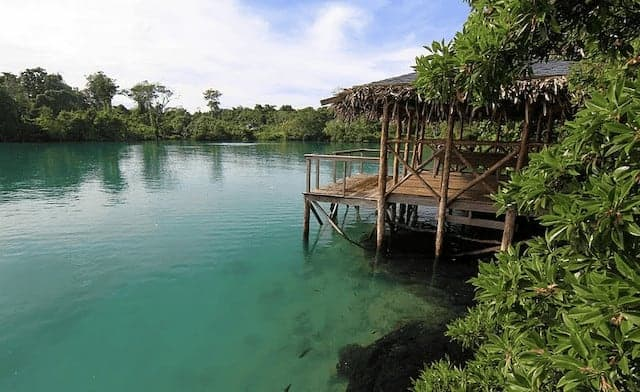 Wooden Chalet suspended on stilts above the green lagoon and surrounded by lush vegetation