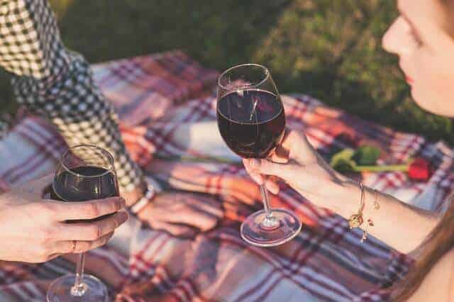 Picnic blanket with two people sat down holding two glasses of red wine in a cheers