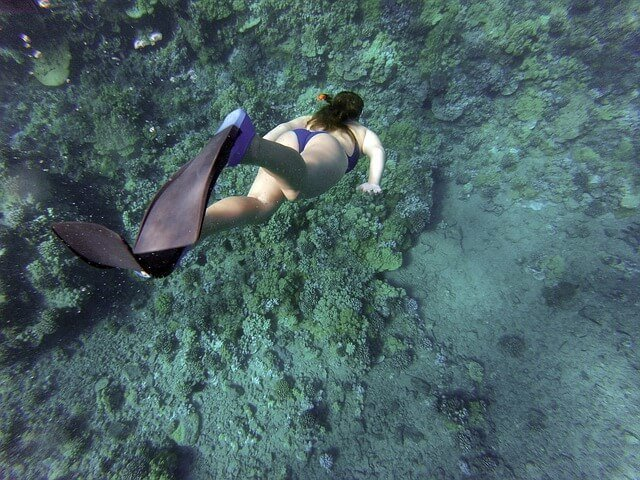 Woman in a bikin wearing a mask and snorkel swimming down towards the coral on the ocean floor