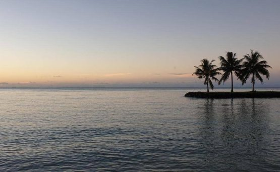 Samoa Travel Tips - sunset on the water with three palm trees on an island in the distance
