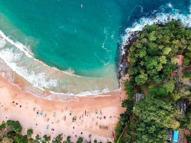 Top Down Aerial view of Jungle Beach - golden sand with people sunbathing in the bottom half of the image, turquoise blue waters in the top healf and plam trees aross the right side of the frame