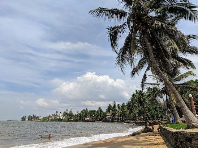 Bentota Beach in Sri Lanka has a slim sandy beach running along a raised brick wall which is topped with plam trees. The ocean on the right is calm with just a few white waves crashing on the shore