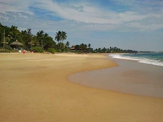 Hikkaduwa Beach - empty golden sands with lush vegetation in the background and calm waters and low tide to the right of the image