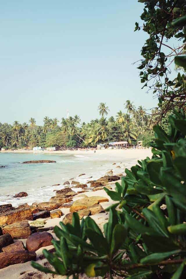 Hiriketiya Beach in Sri Lanka - image was captured from behind green plants in the foreground, behind which are rocks on the shoreline an the ocean on the left. In the distance the white sand beach stretches out and is fringed by tall green leafed plam trees