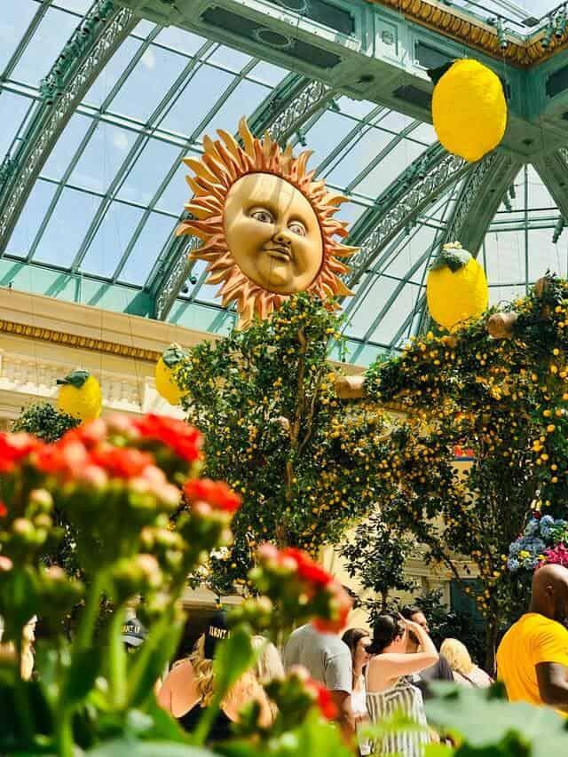 Botanic Garden Conservatory at Bellagio Las Vegas