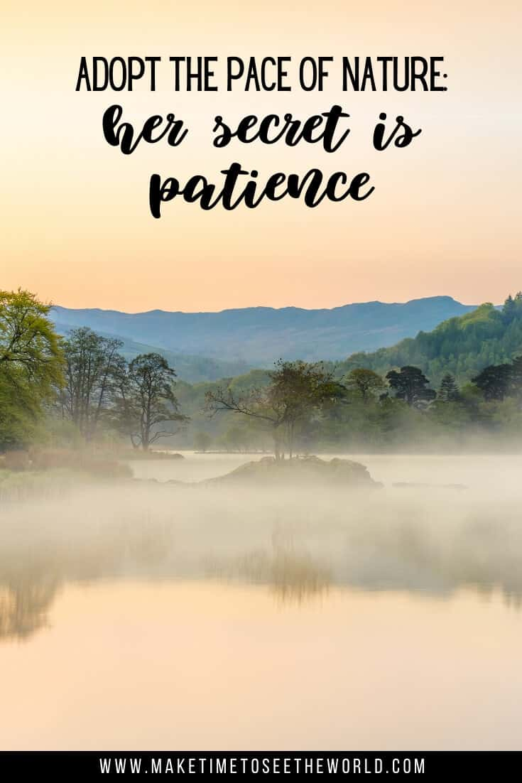 Famous quotes on Patience: Adopt the pace of nature: her secret is patience - Ralph Waldo Emerson