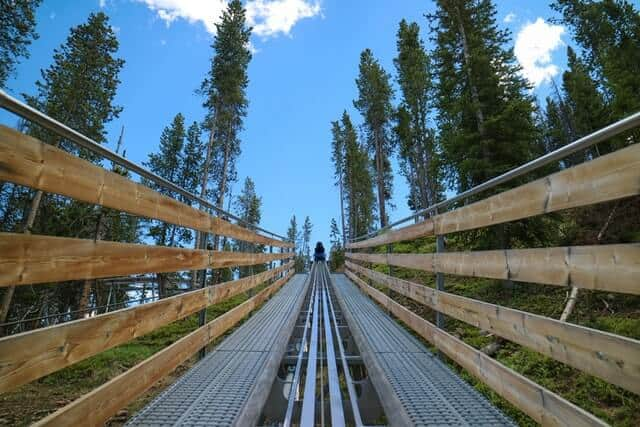 Point of view of someone at the front of the alpine coaster looking up along the central track and flanked by the wooden sides of the tracks