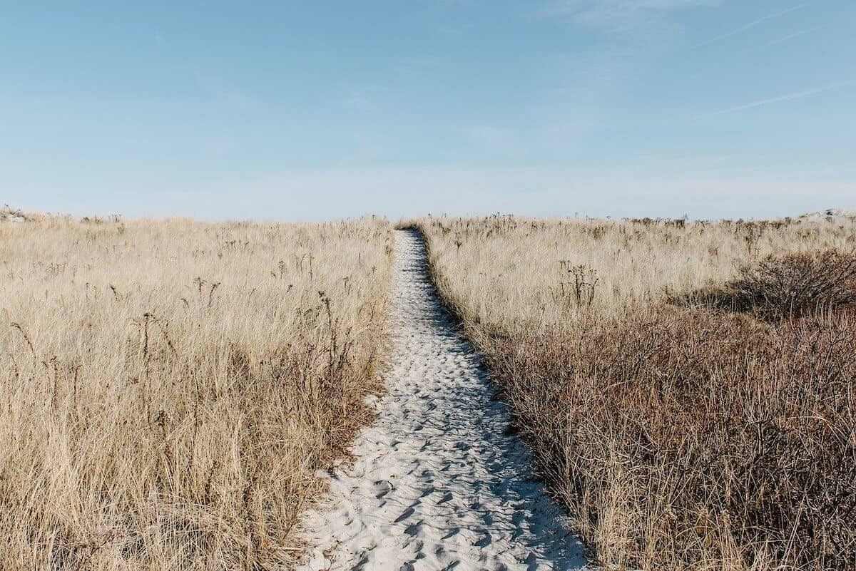Top Explore Quotes to Inspire your Wanderlust cover photo of a sand path leading away from the front of the image with beige shurbbery either side